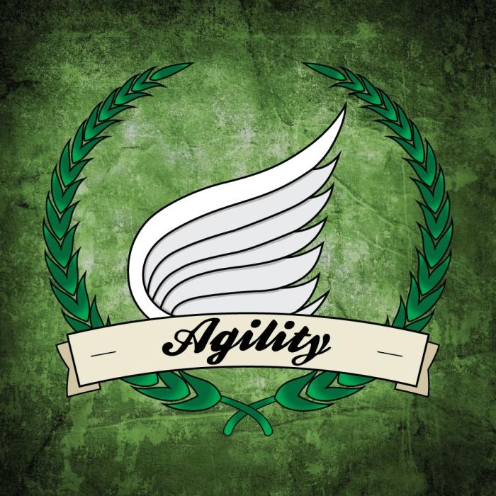 Agility-Badge